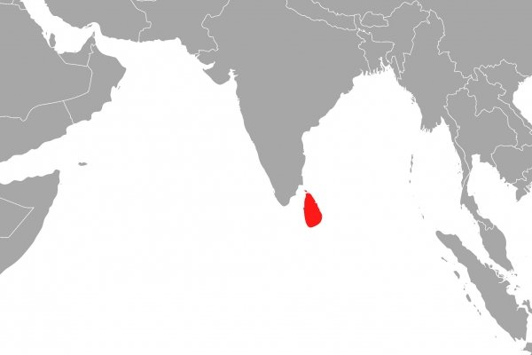 Sri Lanka, über dts Nachrichtenagentur