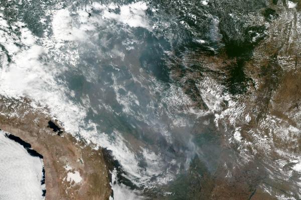 Satellitenbild von Waldbränden in Brasilien, NASA/EOSDIS, über dts Nachrichtenagentur