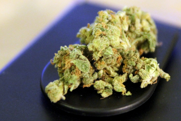 Cannabis, über dts Nachrichtenagentur
