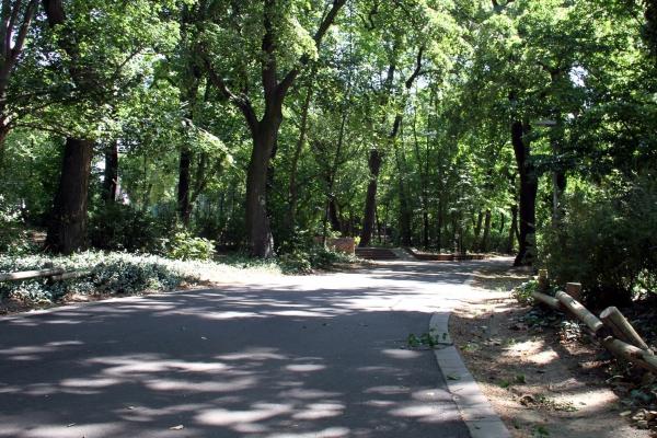 Stadtpark, über dts Nachrichtenagentur